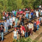 Polacy zostali oszukani. PiS ukradkiem wspiera masową imigrację do Polski