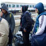 Radio Maryja: Rośnie liczba cudzoziemców pracujących w Polsce