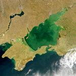 Lewicki: Mała bitwa morska w cieniu walki o prezydenturę na Ukrainie