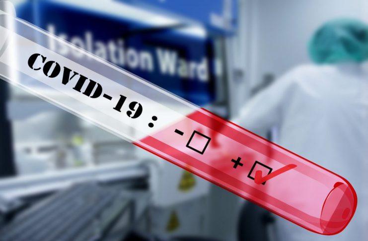 PolitykaPolska covid 19 PCR Test 2